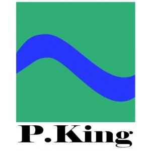 P.King (КНР)